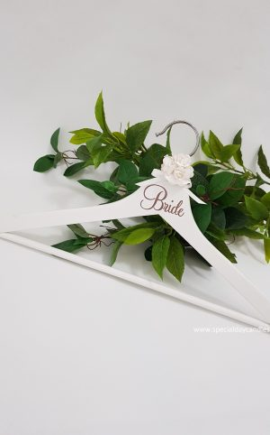 adult-coat-hanger-bride-silver-font11